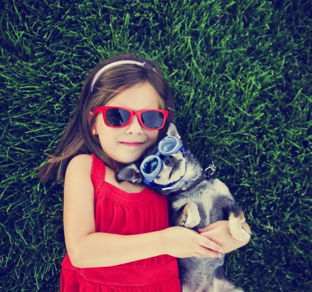 snapshot of a cute girl with sunglasses holding a chihuahua with
